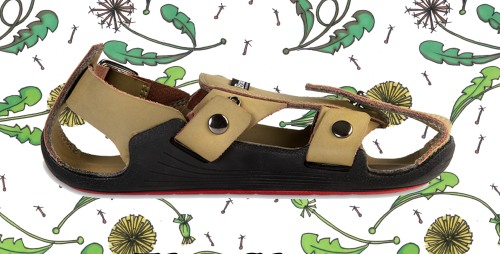 blog shoe