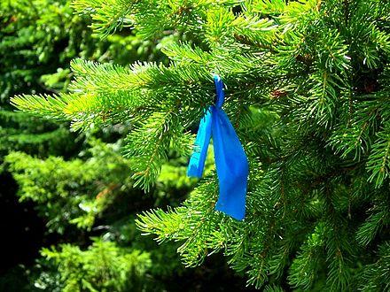 Biodegradable-camping-tape