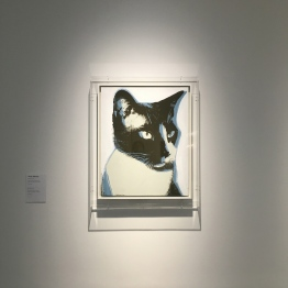 Cat - Andy Warhol