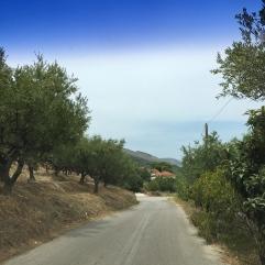 Winding road, Zakynthos