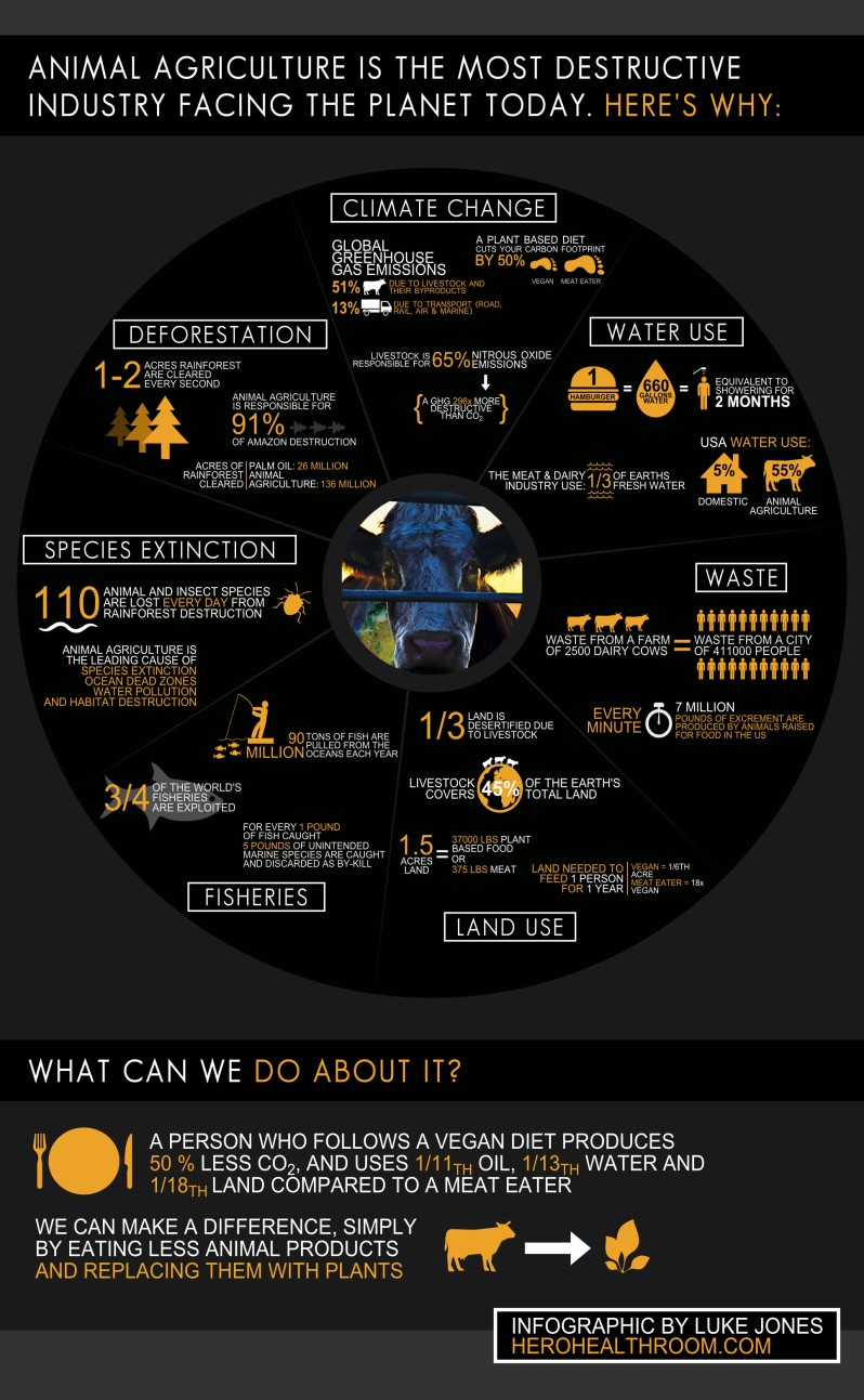 Cowspiracy-Infographic copy.jpg