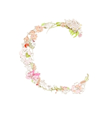 Spring floral font, Letter C