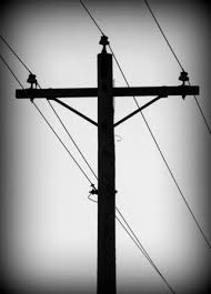 telephone-pole